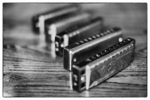 multiple Harmonicas on display